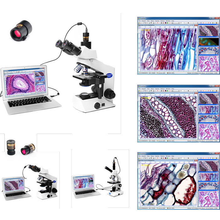 دوربین چشمی - میکروسکوپ