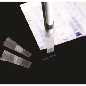 نوک سمپلر برش ژل برای شبیه سازی ژن و کلونینگ